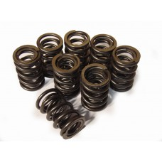 050 - Up rated valve spring set.